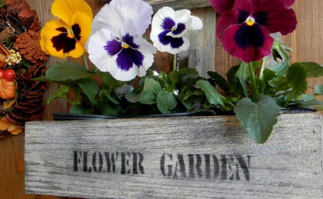 Proljetne dekoracije u Vrtnom centru