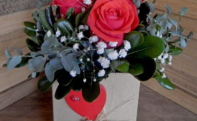 Ljubav se nalazi u Vrtnom centru Agro-kuće